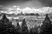 "Bertazzoni, ""Grand Teton National park"", ""Jackson Lake"", Landing, Nikon, ""Oxbow Bend"", ""Red Hills"", Schwabacher, USA, Wyoming, bears, birds, bisons, clouds, colors, dawn, dusk, flowers, landscape, mir"
